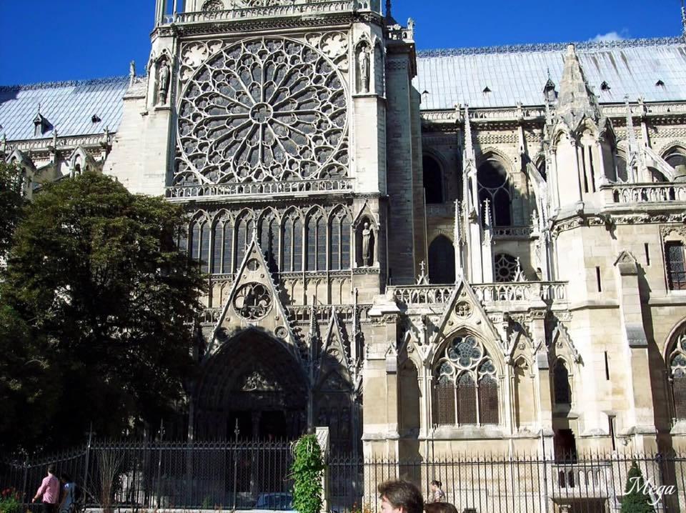 Notre Dame beauty 31.jpg