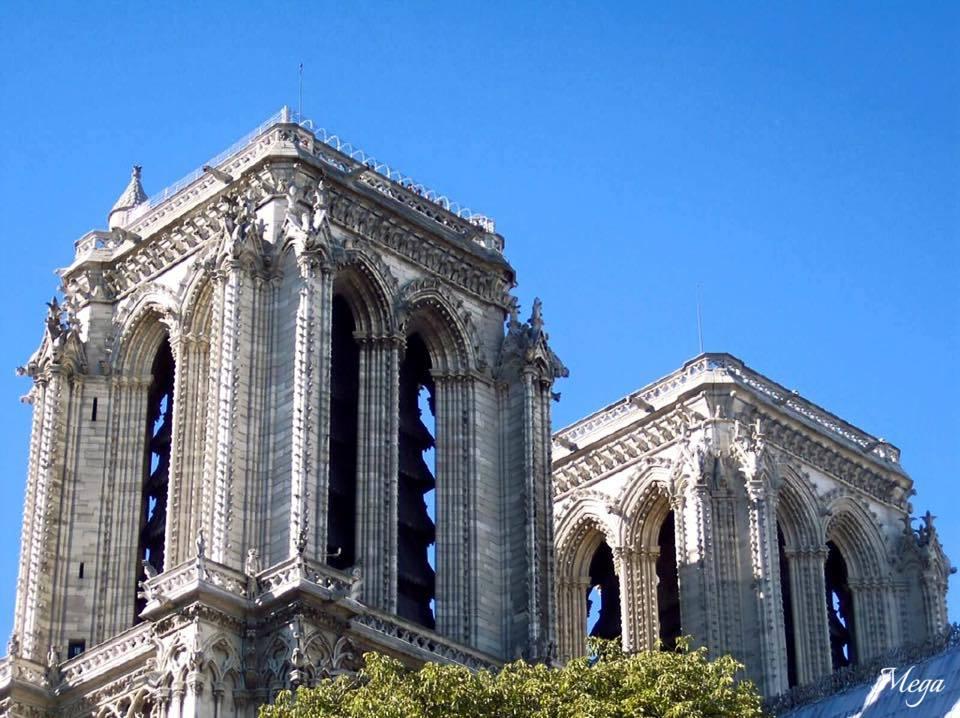 Notre Dame beauty 32.jpg