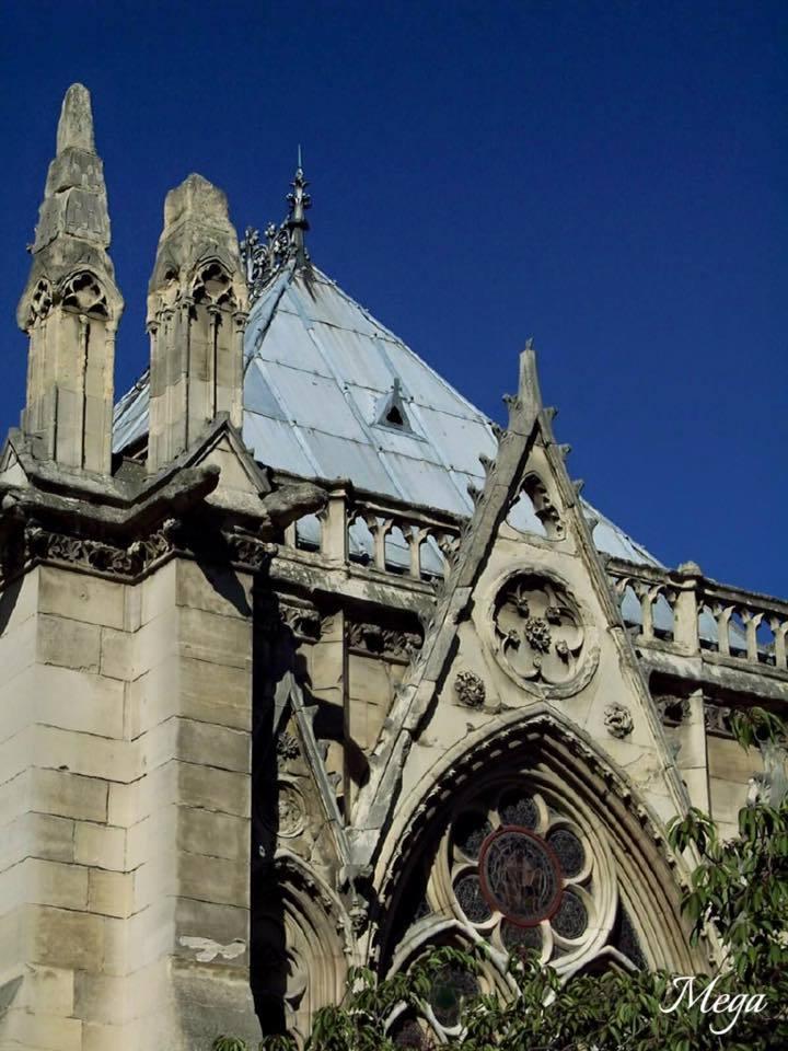 Notre Dame beauty 33.jpg