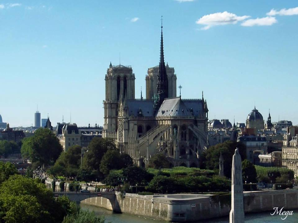Notre Dame beauty 36.jpg