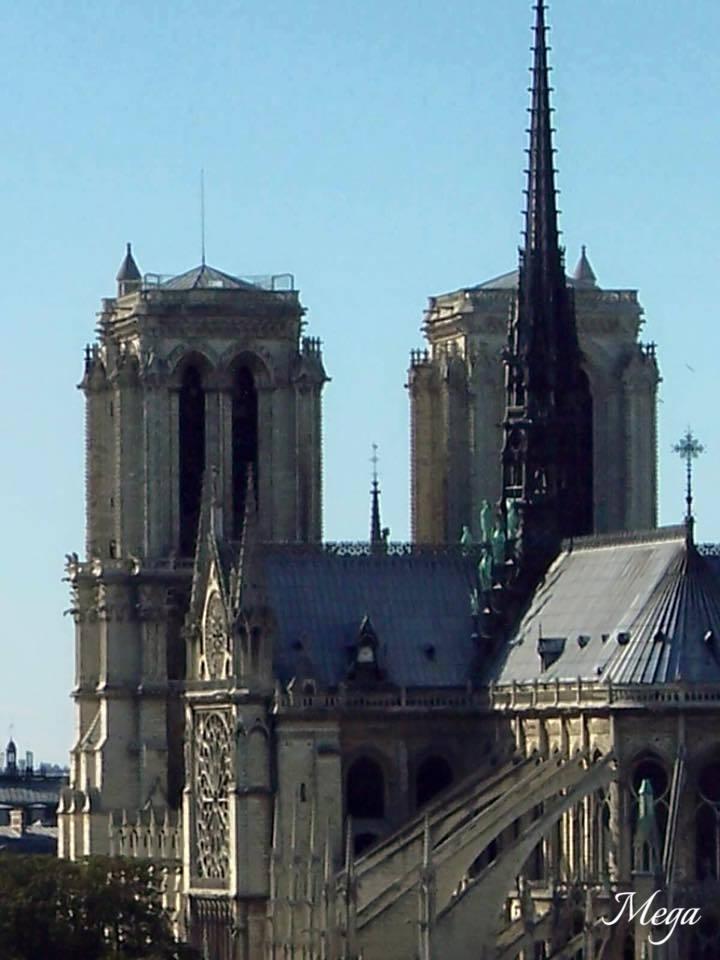 Notre Dame beauty 37.jpg