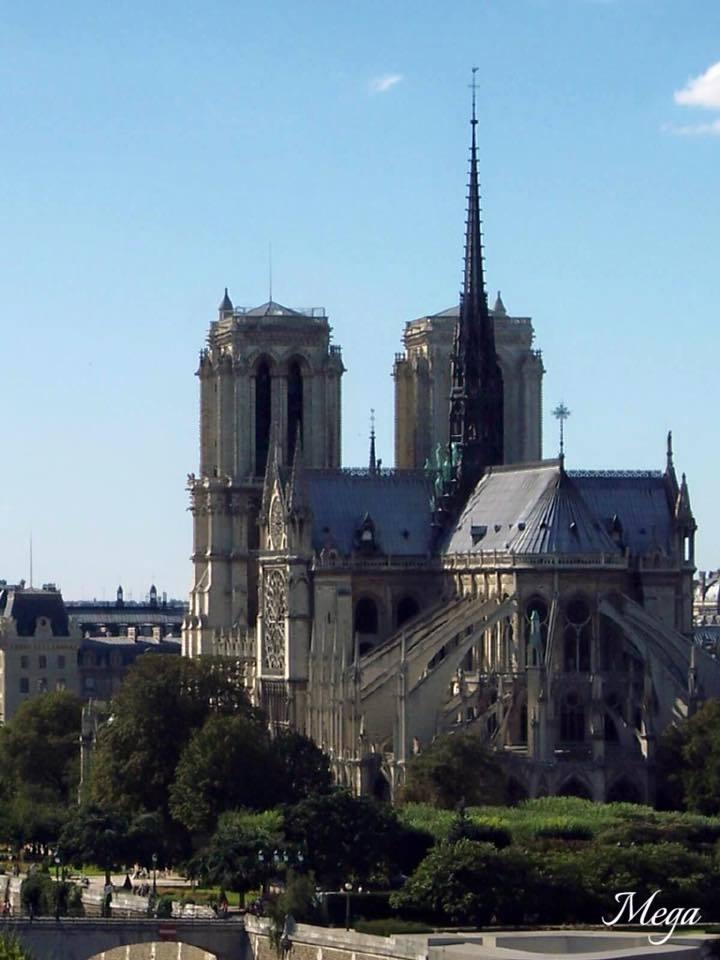 Notre Dame beauty 38.jpg