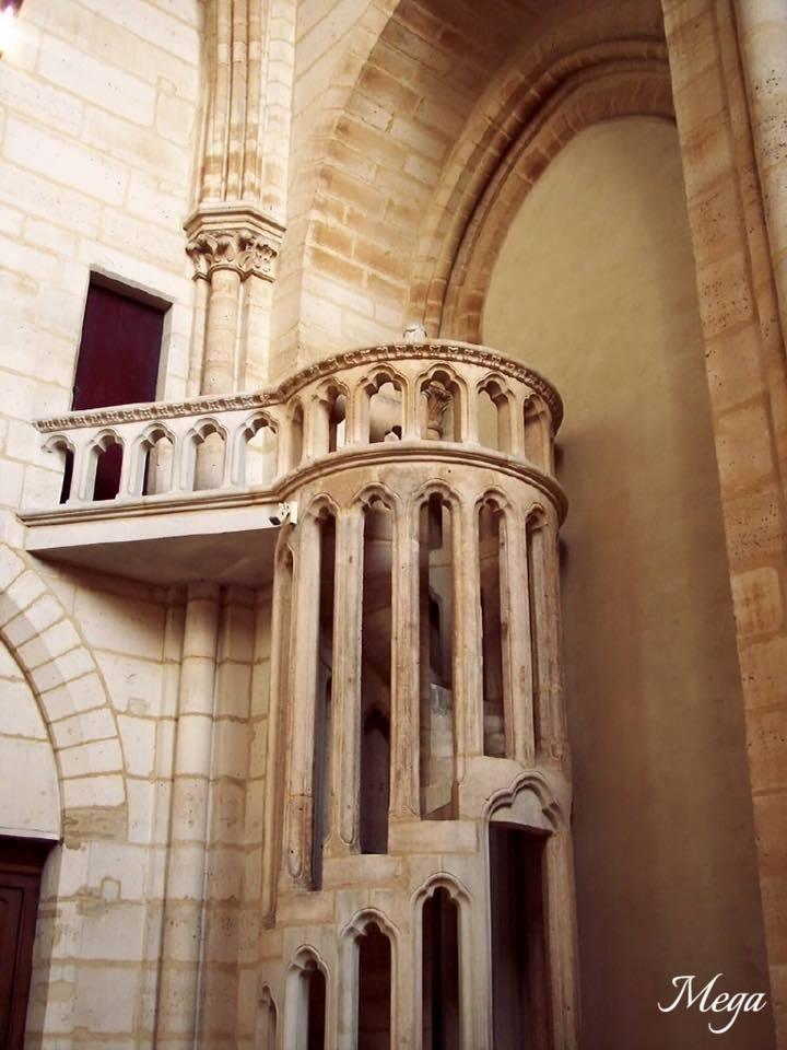 Notre Dame beauty 39.jpg