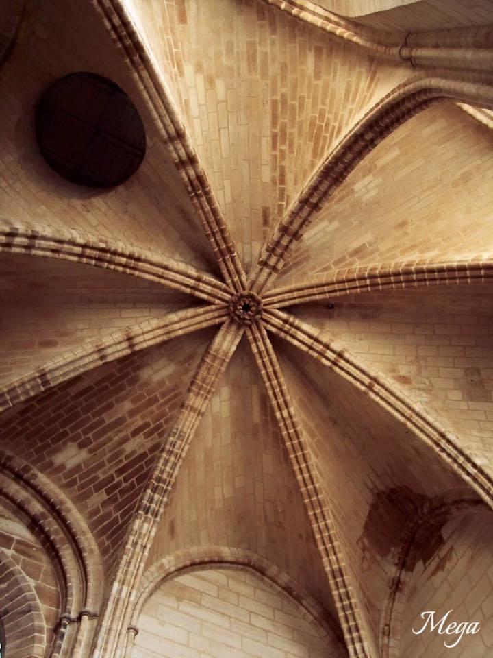 Notre Dame beauty 40.jpg