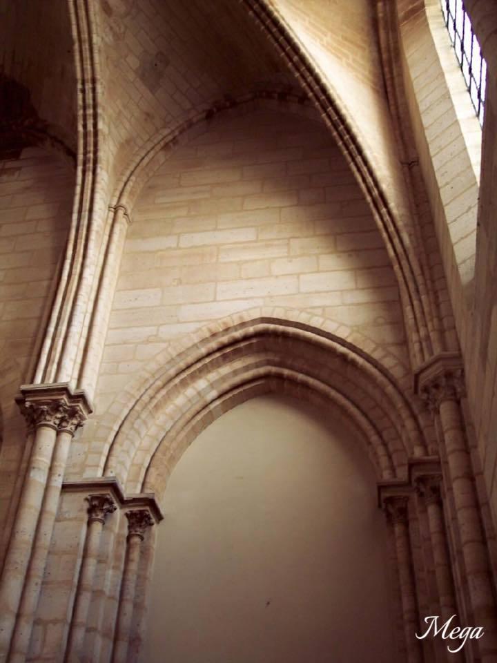 Notre Dame beauty 41.jpg