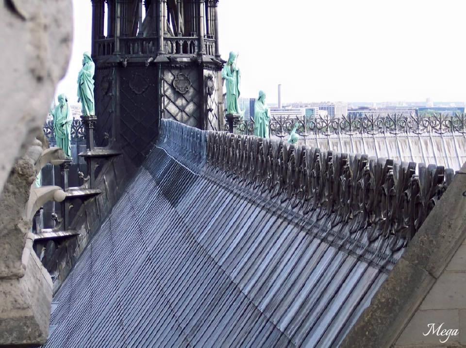 Notre Dame beauty 43.jpg
