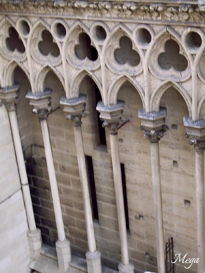 Notre Dame beauty 45.jpg