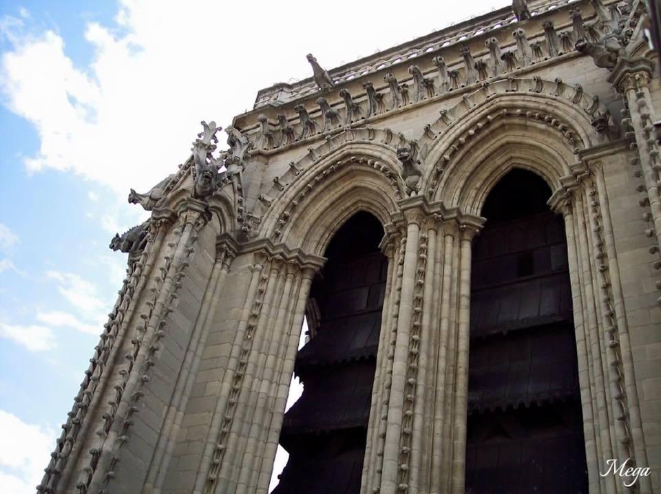 Notre Dame beauty 46.jpg