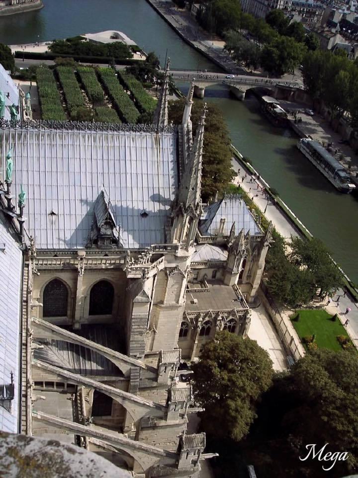 Notre Dame beauty 49.jpg