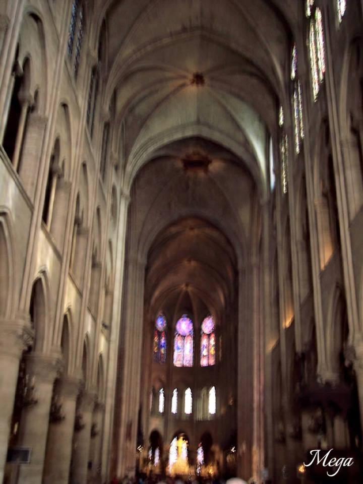 Notre Dame beauty 51.jpg