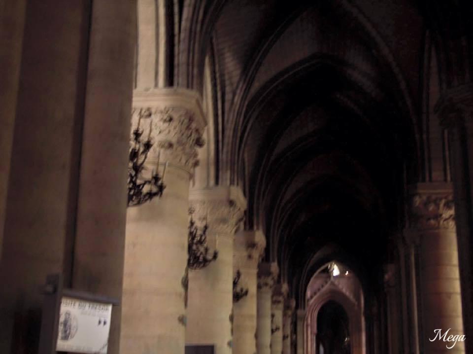 Notre Dame beauty 52.jpg