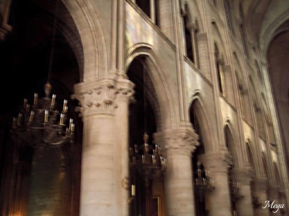 Notre Dame beauty 54.jpg