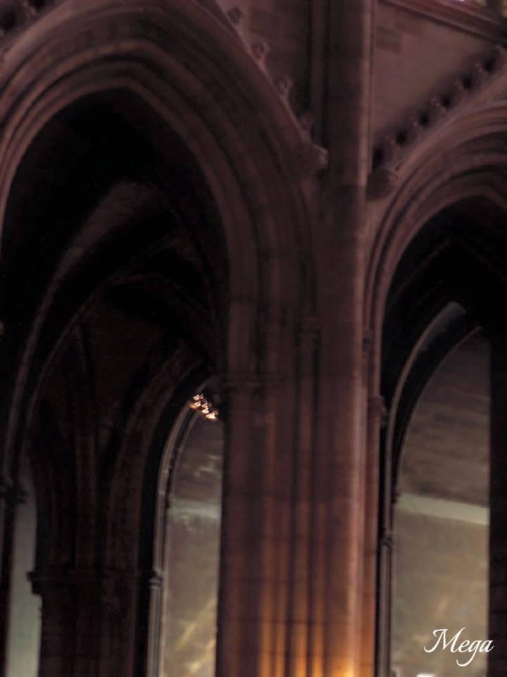 Notre Dame beauty 55.jpg