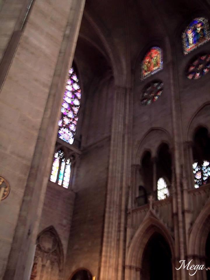Notre Dame beauty 56.jpg