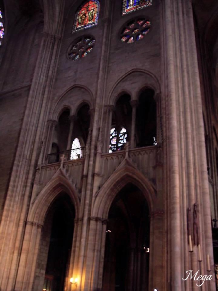 Notre Dame beauty 57.jpg