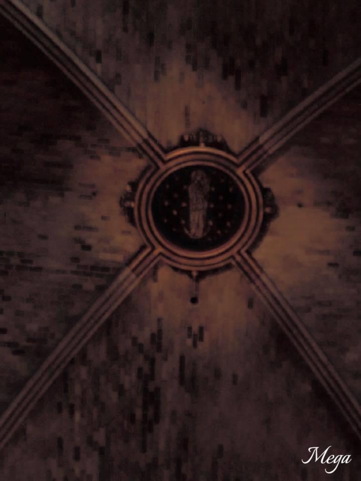 Notre Dame beauty 58.jpg