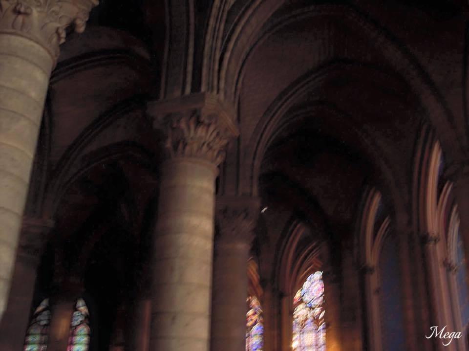 Notre Dame beauty 62.jpg