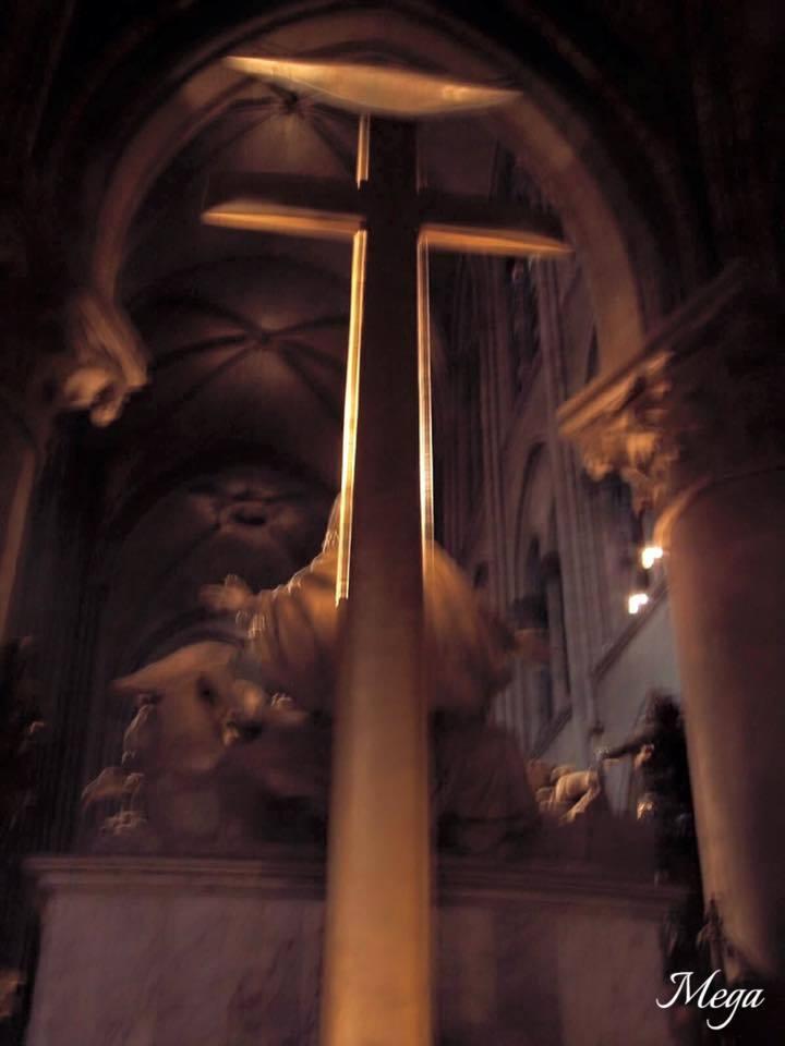 Notre Dame beauty 65.jpg
