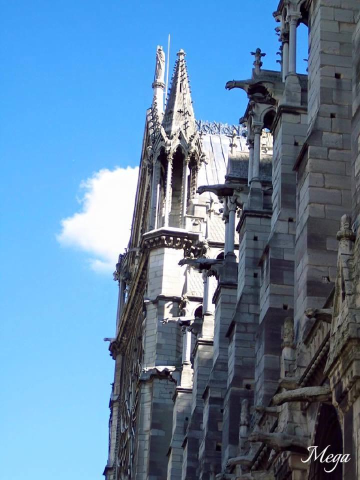 Notre Dame beauty 67.jpg