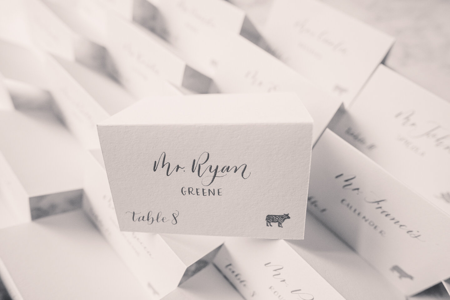 White escort cards with gray ink, full names, table numbers and meal selections on a hedge wall.