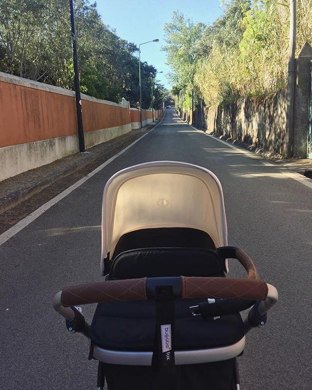 Happy walks 🌻🌻 . . . . . . #bugaboofox #bugaboo #walks #spring #feelslikespring #baby #mum