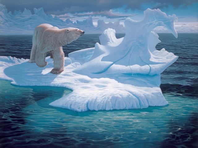 Arctic 36 x 48