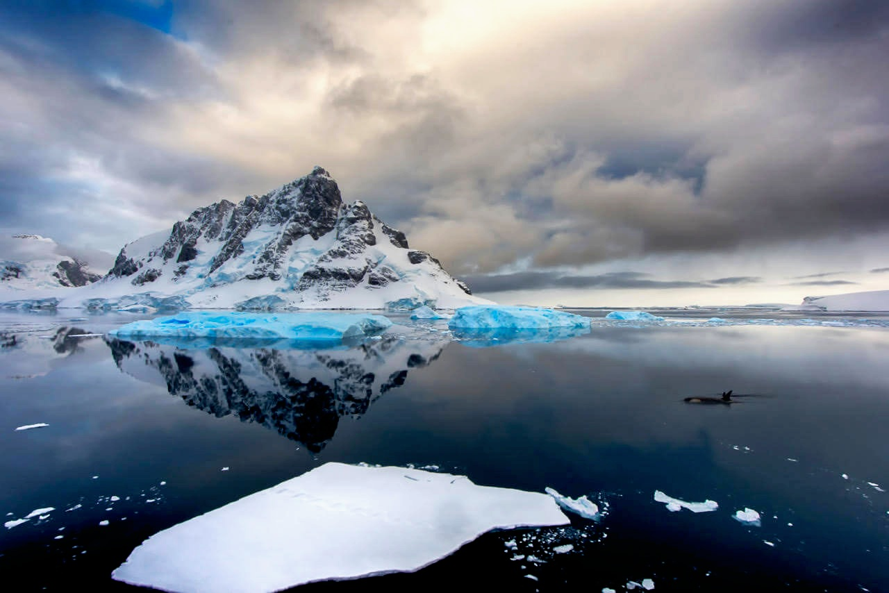 Icescapes of Antarctica