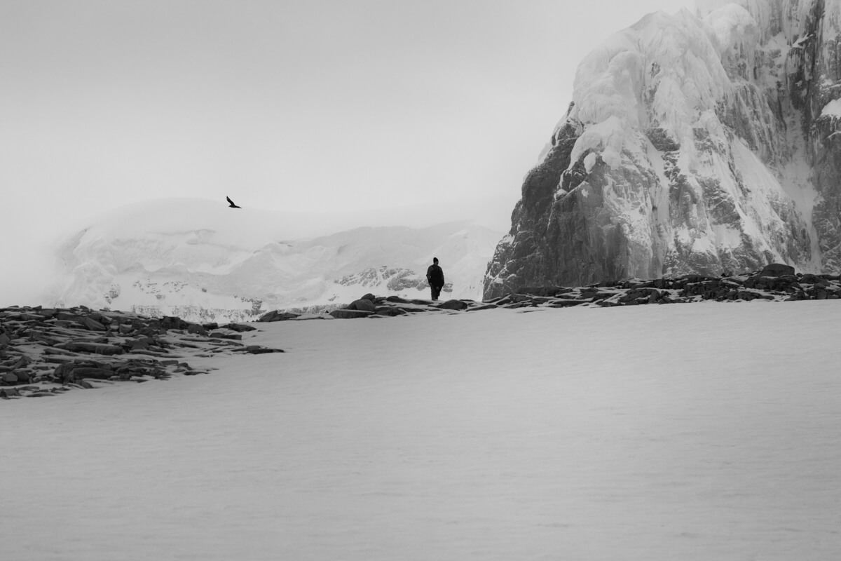 antarctica-image-bw-craig-brown.jpg