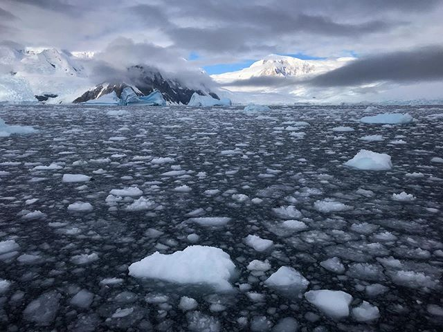 A lovely afternoon of ice and glaciers along the Antarctic Peninsula
