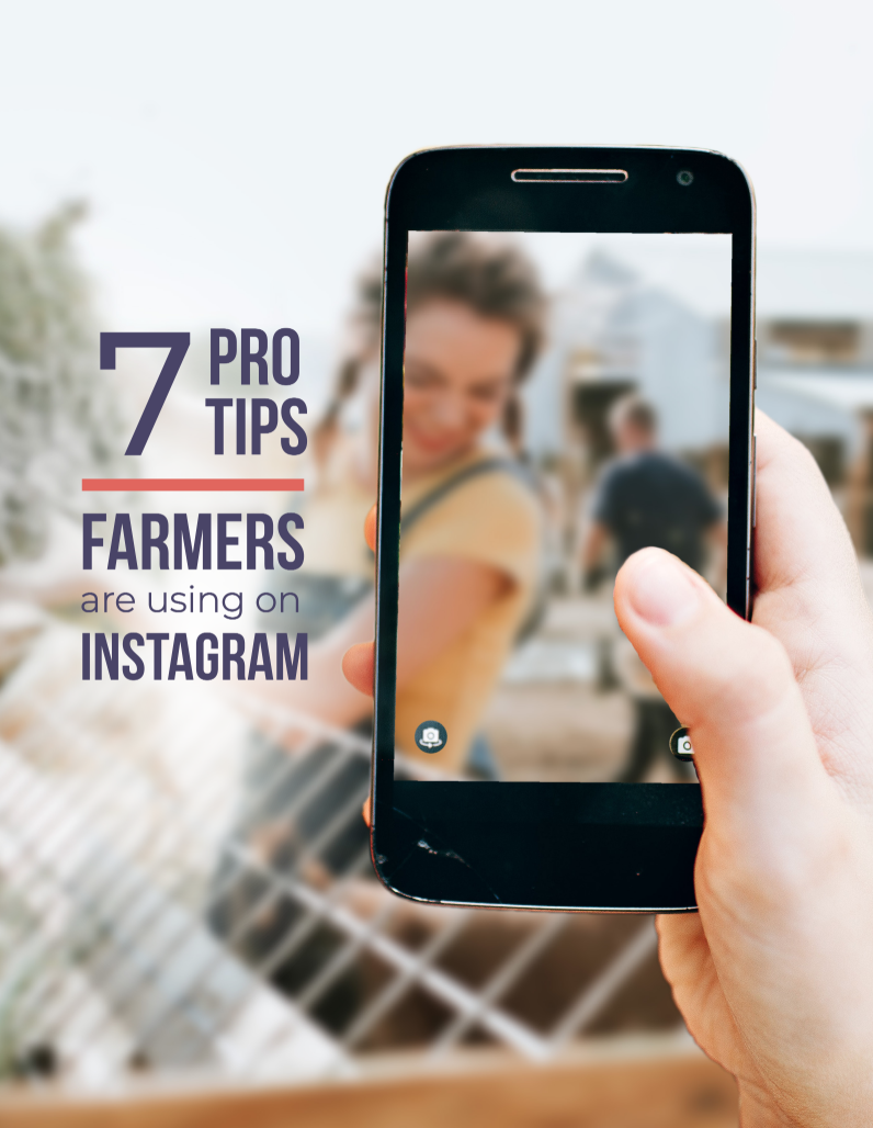 Instagram Pro Tips cover.png