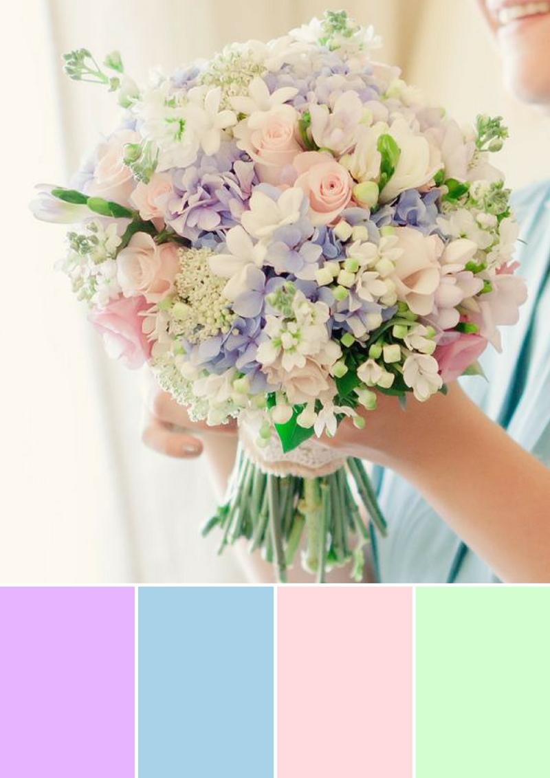 Paleta de cores, imagem  icasei