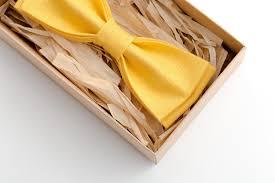 gravata borboleta.jpg