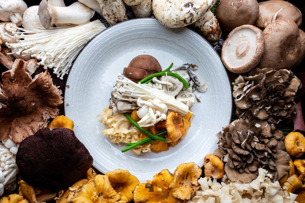 Mushroom Packet with Oysters