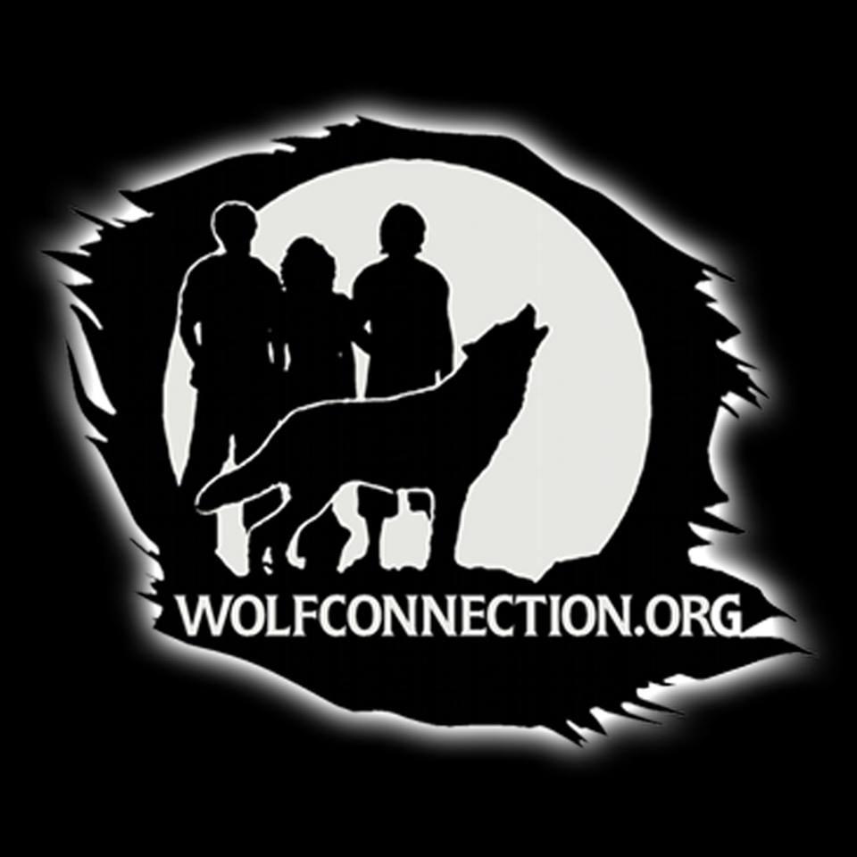 WolfConn LOGO.jpg