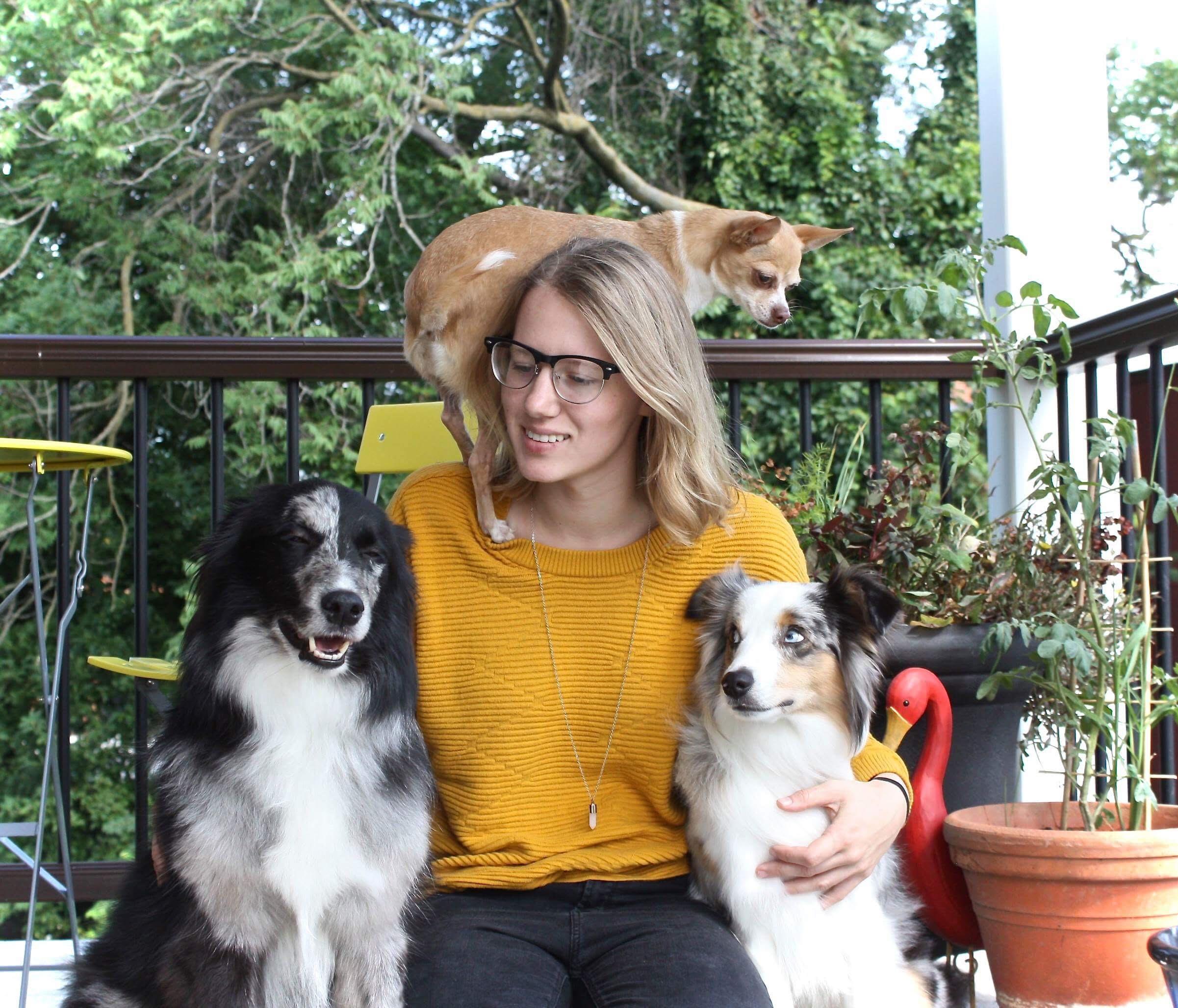 Gabby dogs.jpg