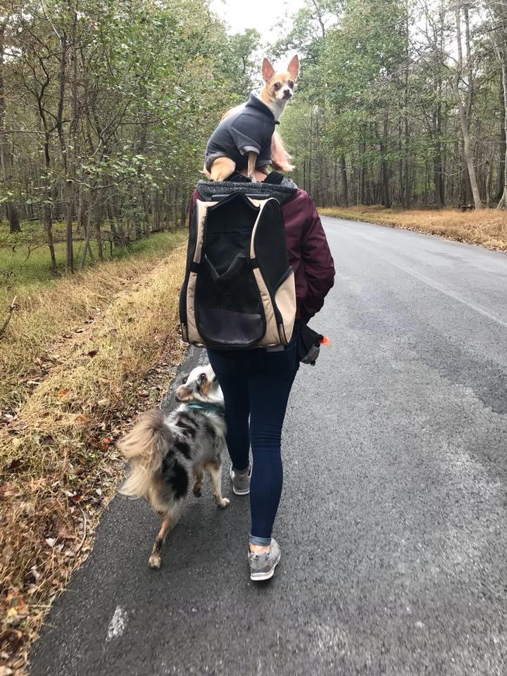 "Taco, me, and Beowulf on a ""walk"""