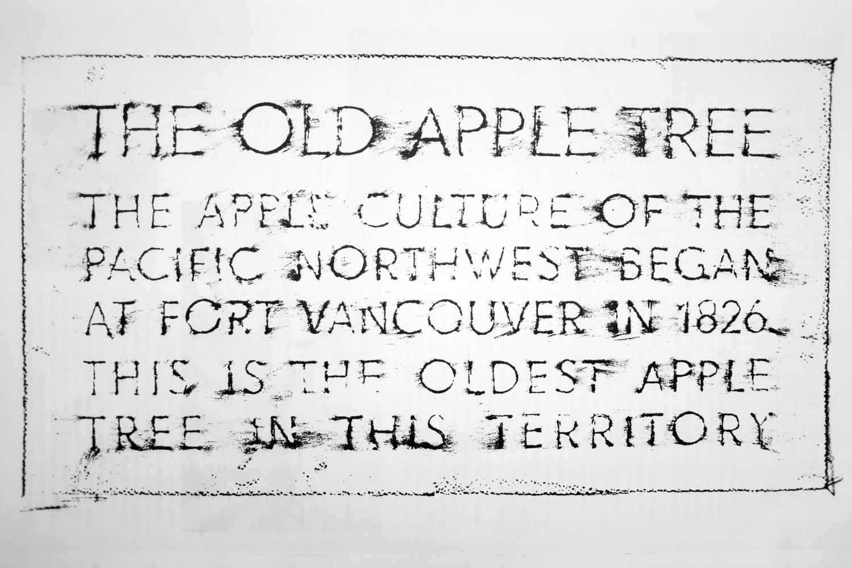 OldApple_Calisch_WEB-72-2.jpg