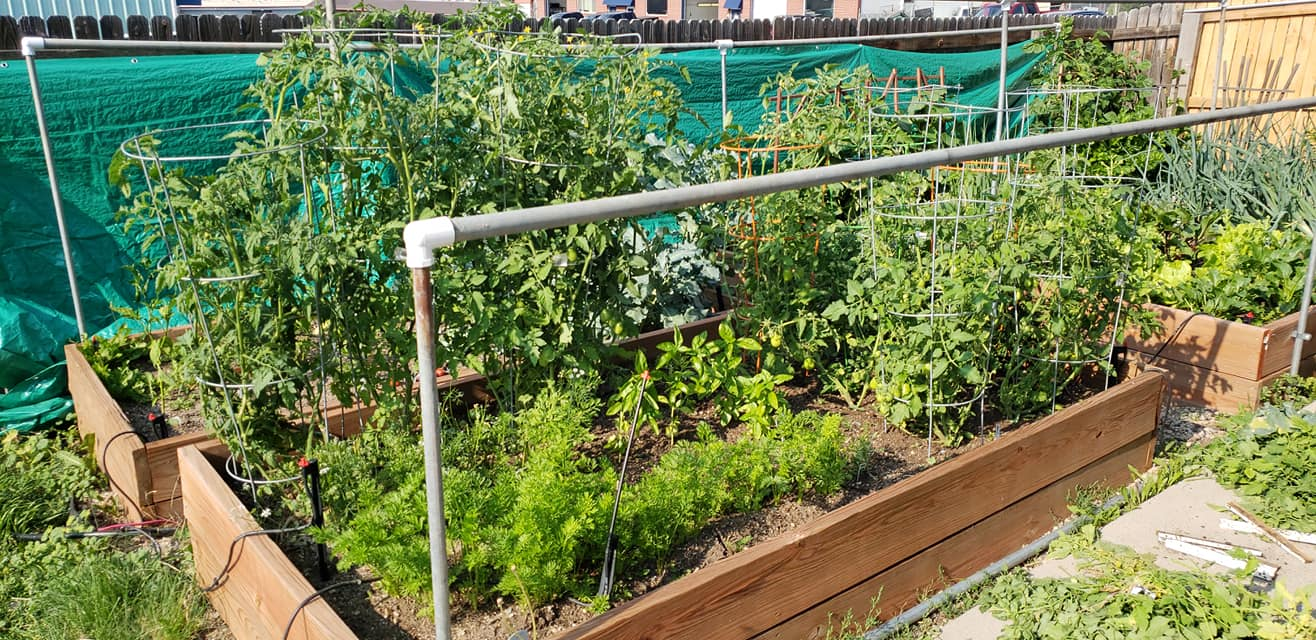 Garden beds - Turn a portion of your outdoor space into a thriving food source.