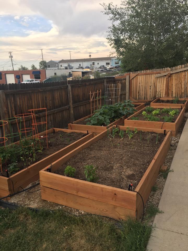 Garden Boxes.jpg