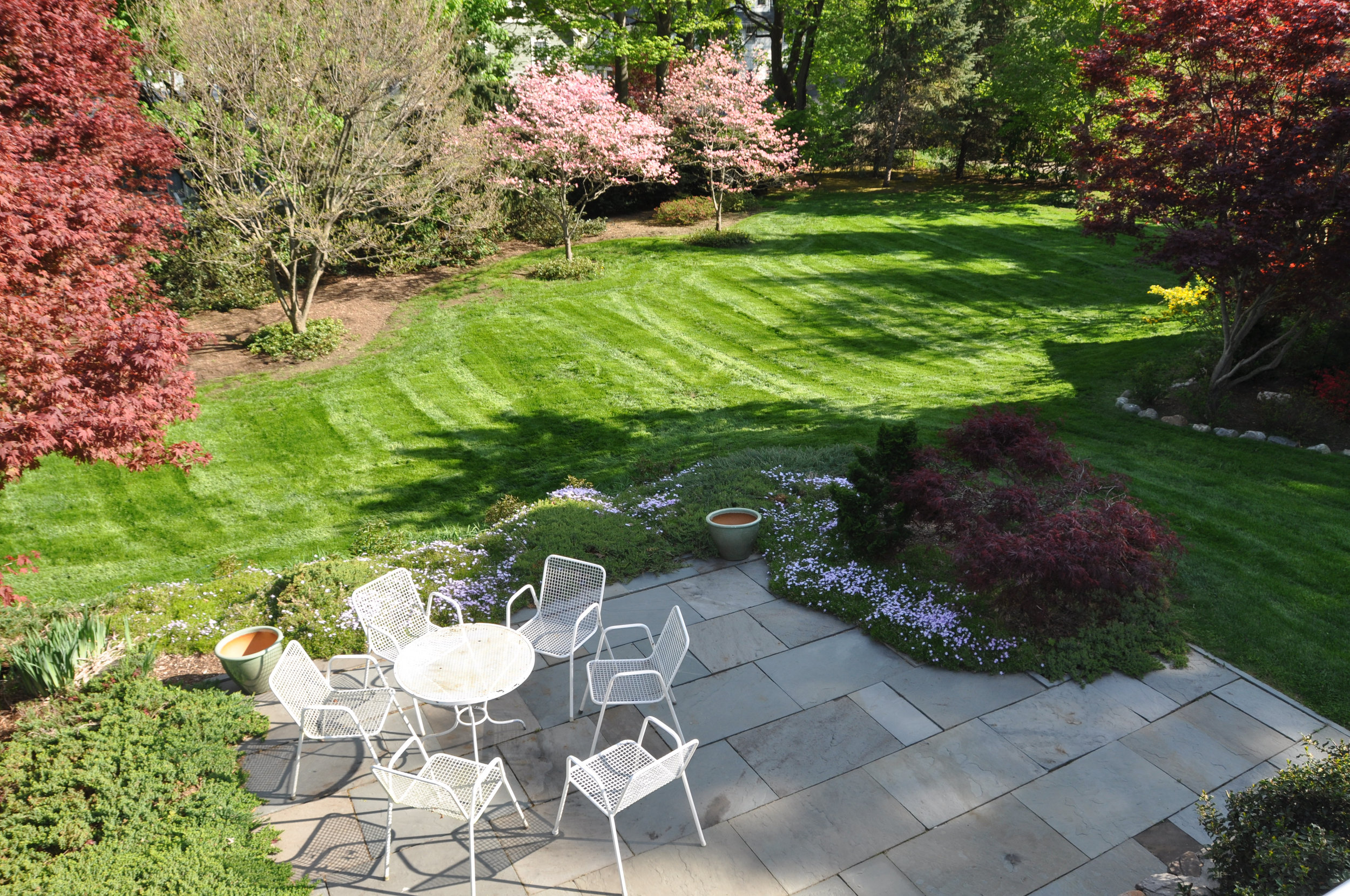 Patio and lower yard from verandah with blooming border flowers.jpg