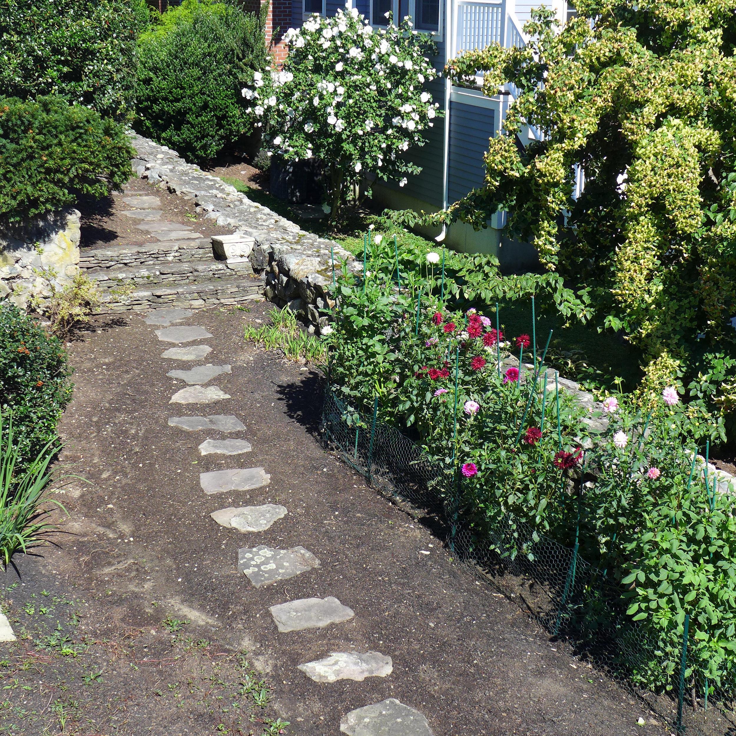 Dahlia bed and stone walk.jpg