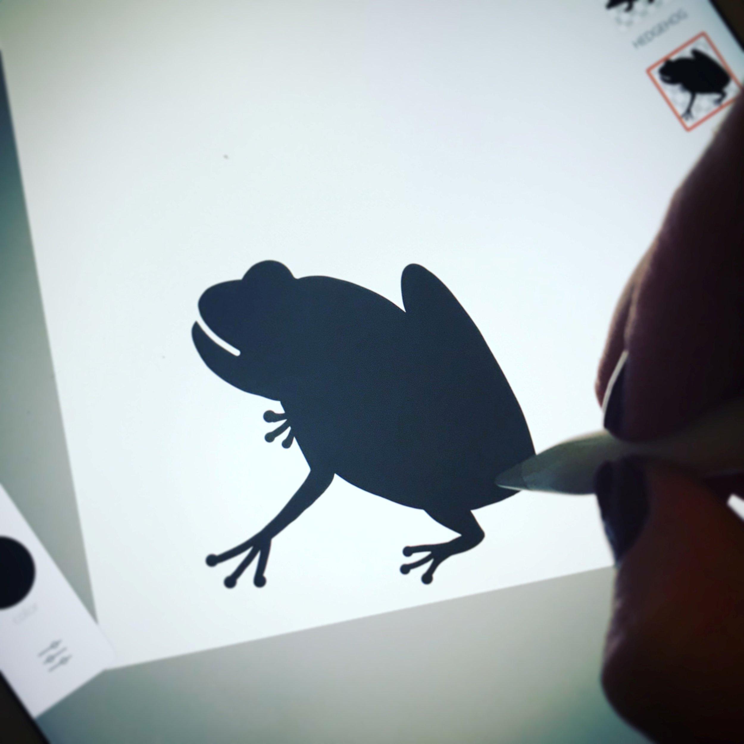 Frog Sketch in progress ©HolchesterDesigns
