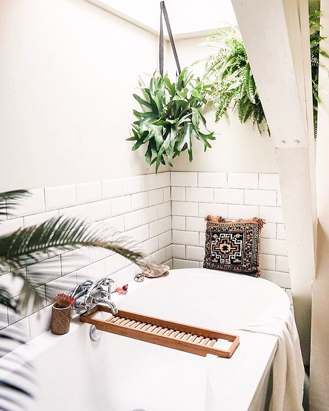 On a day like today with how hott it is outside I just want to sit in this bathtub and not be bothered ✌🏽 _  Bathroom goals from @designsponge 🌱 🌵🌿 • #bathroomideas #bathroomgoals #interior4you1 #hunkerhome #plantsplantsplants #interiorplants #doingneutralright #plantsagram #plantshelfie #neutraldecor #howihome #mybohohome