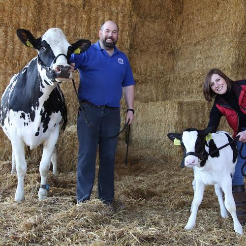 Mawley+Town+Farm+Meg+Hawkins+Photographer.jpeg