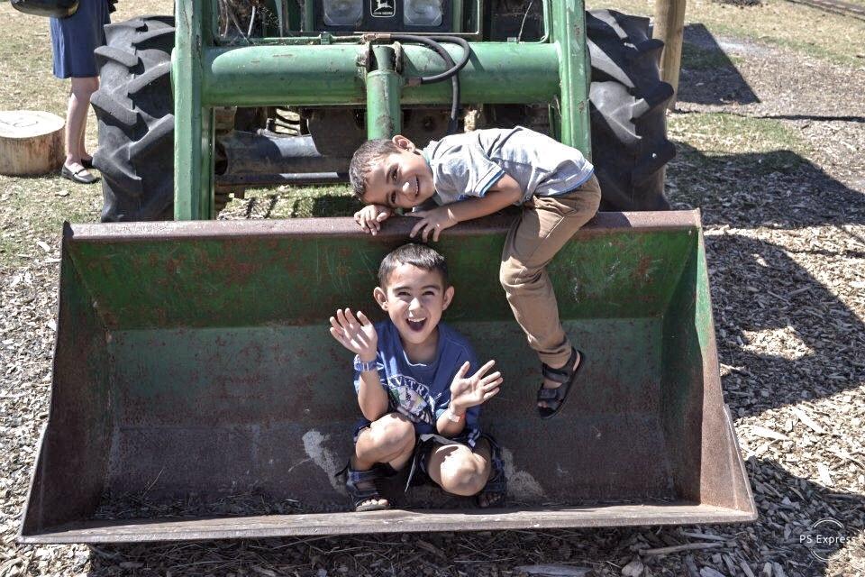 GRADED-boys in digger.JPEG