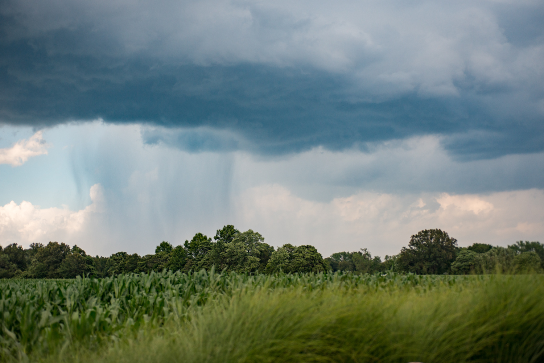 Storm, Landscape, Midwest, Color Photograph, Healing Art, Hospital Art, Interior Design, Wall Art