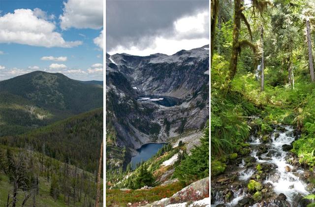 Image from  Washington Trails Association's blog post.