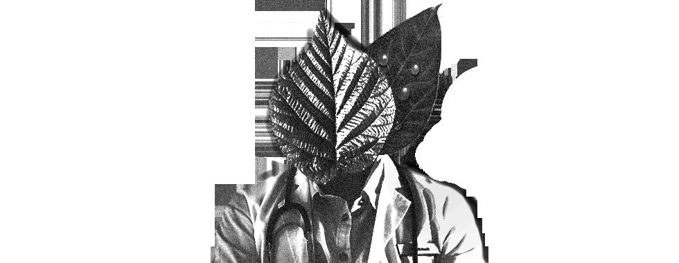 functional_medicine_natural_doctor.png