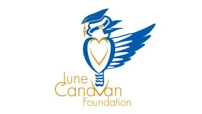 Canavation_foundation.jpg
