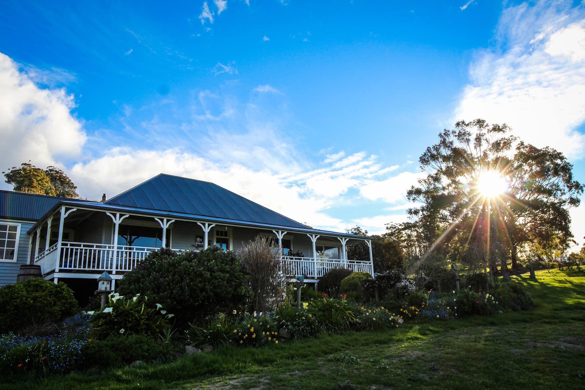 Hit the Trail and enjoy the finest produce the Huon Valley has to offer.
